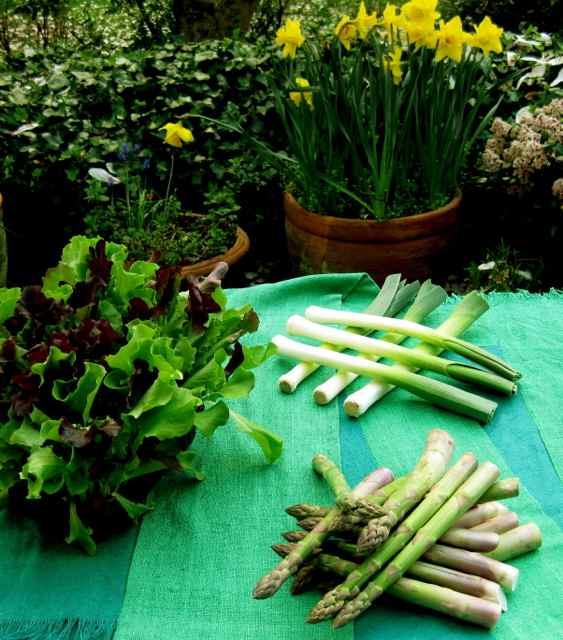 IMG_4408leeks:asparagus