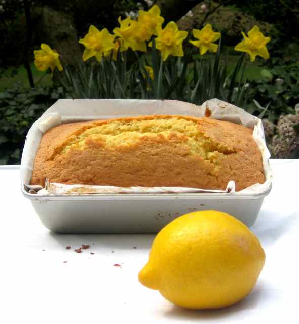 IMG_4343lemon cake cooked